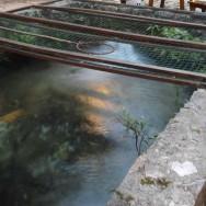 Croacia-no-es-solo-Dubrovnik-Restaurante-Petro