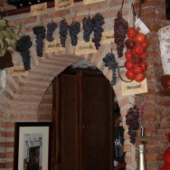 Granada | La Tana | tipos de uva