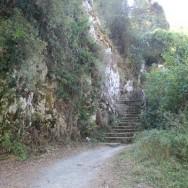 Senda del oso | ruta | Asturias