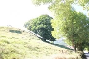 Asturias | Senda del oso | Ruta |