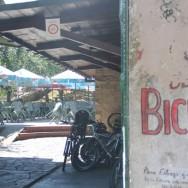 Senda del oso alquiler de bicis | Asturias